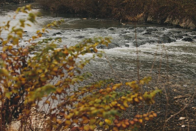 Na sliki je Kamniška Bistrica.